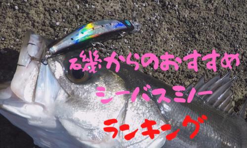 磯からのおすすめミノ―|海の泡太郎